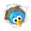 Seko mums Twitter