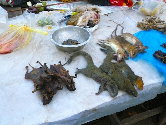 Una visita al mercado de Paksan nos despertó el apetito