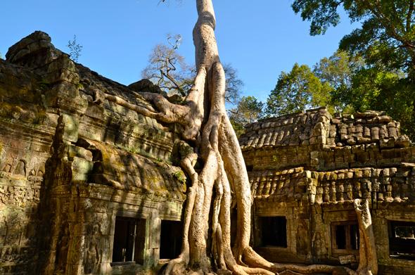 ¡Bienvenidos a Camboya!