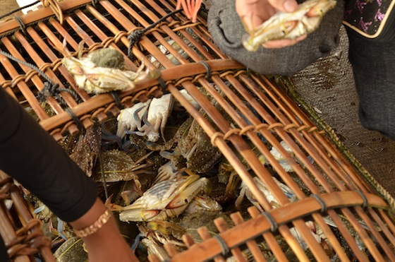 Viendo como venden al atardecer los cangrejos recogidos durante el día