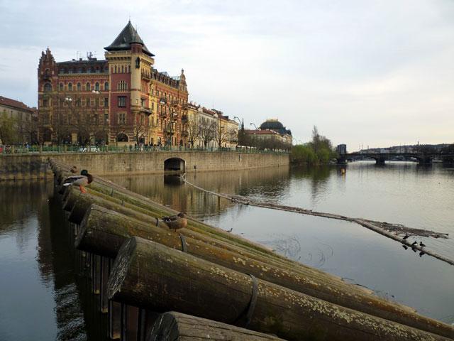 En la rivera del río en Praga
