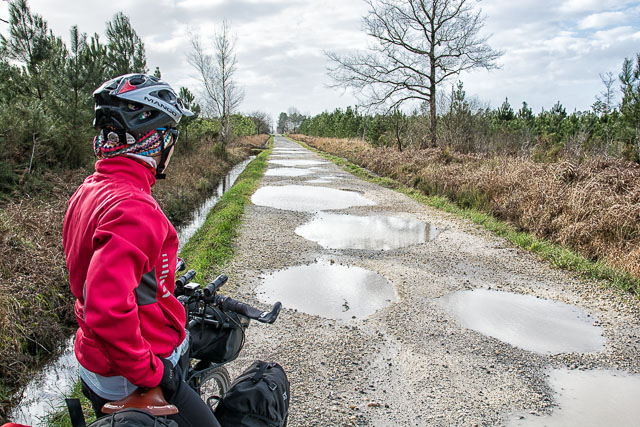 En bici por las pistas forestales inundadas